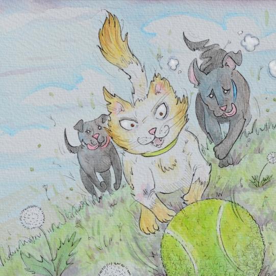 Sample work for Children's Book D.U.C. #4